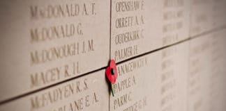 Poppy on Menin Gate in Ypres, Belgium. © Jelleke Vanooteghem