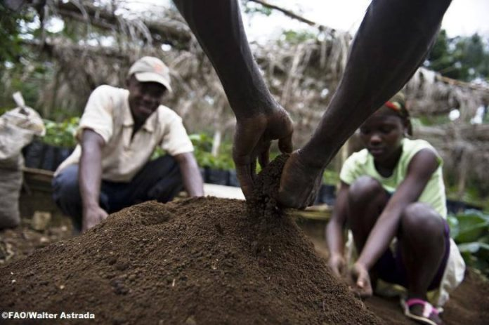 Farmers working the soil by hand