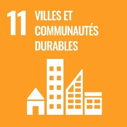 objectifs developpement durable, objectif 11, icone