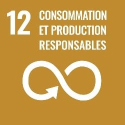 objectifs developpement durable, objectif 12, icone