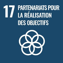 objectifs developpement durable, objectif 17, icone